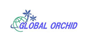 GLOBAL ORCHID